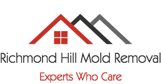 richmond-hill-mold-removal-logo